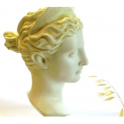 Head of Artemis